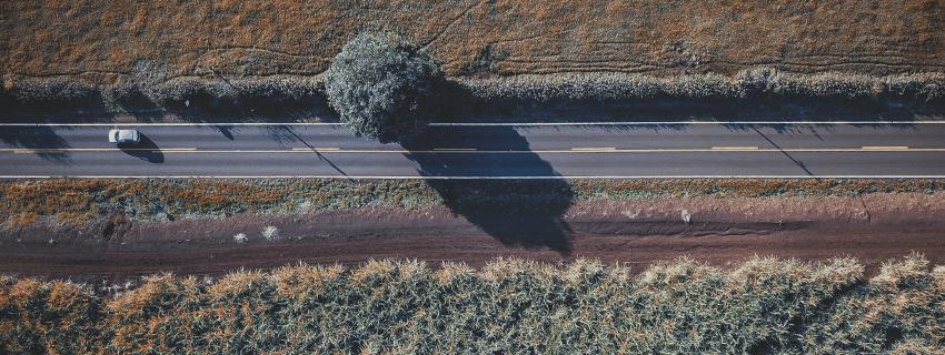 Elizabeth Scales Road